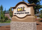 cat-adoption-sign-600x300